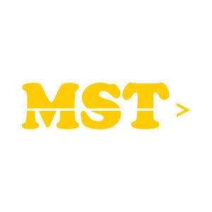 partner_mst